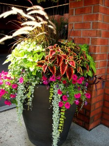 Pretty Planter Design Ideas For Summer Porch To Looks Amazing23