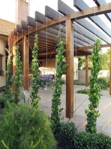 Unique Wooden Pergola Design Ideas Ideas For Your Dream Garden44
