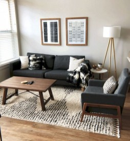 Hottest Small Living Room Decor Ideas For Your Apartment To Try28