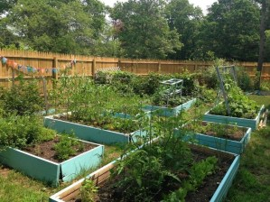 Best Raised Garden Bed For Backyard Landscaping Ideas To Try Asap05