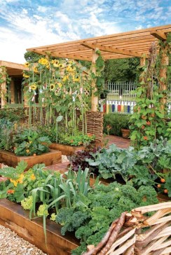 Brilliant Gardening Design Ideas You Need To Know In 202006