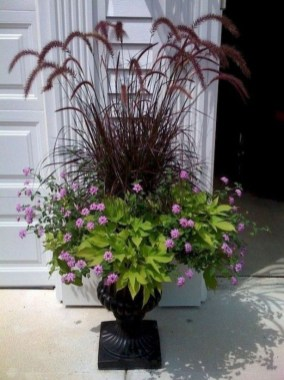 Sophisticated Container Garden Flower Ideas For This Winter To Try07