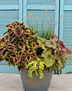 Sophisticated Container Garden Flower Ideas For This Winter To Try09