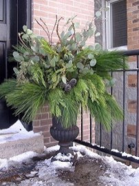 Sophisticated Container Garden Flower Ideas For This Winter To Try11