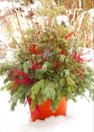 Sophisticated Container Garden Flower Ideas For This Winter To Try14