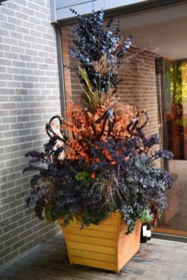 Sophisticated Container Garden Flower Ideas For This Winter To Try17