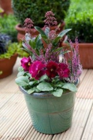 Sophisticated Container Garden Flower Ideas For This Winter To Try22