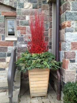 Sophisticated Container Garden Flower Ideas For This Winter To Try25