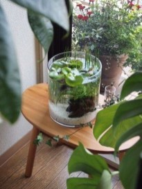 Awesome Indoor Water Garden Design Ideas That Refresh Your Interiors05