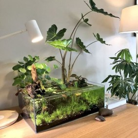 Awesome Indoor Water Garden Design Ideas That Refresh Your Interiors07