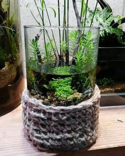 Awesome Indoor Water Garden Design Ideas That Refresh Your Interiors34