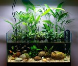 Awesome Indoor Water Garden Design Ideas That Refresh Your Interiors35