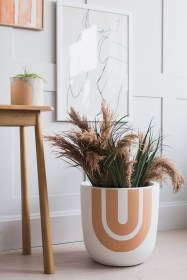 Fascinating Indoor Plants Design Ideas With Desert Atmosphere To Have22