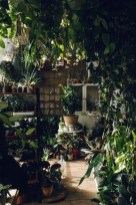 Lovely Indoor Jungle Decor Ideas To Try Asap03