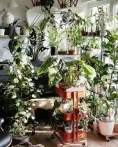 Lovely Indoor Jungle Decor Ideas To Try Asap10