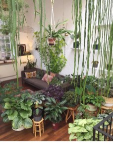 Lovely Indoor Jungle Decor Ideas To Try Asap12