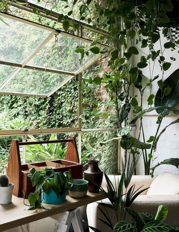 Lovely Indoor Jungle Decor Ideas To Try Asap29
