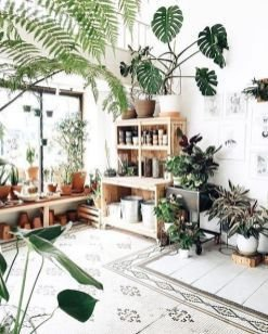 Lovely Indoor Jungle Decor Ideas To Try Asap31