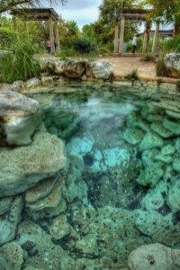 Comfy Swimming Pools Design Ideas With Stunning Natural Surroundings08