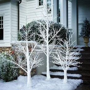 Favorite Winter Tree Display Design Ideas For Small Spaces01