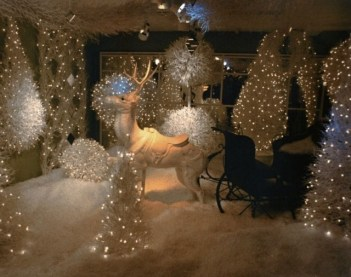 Favorite Winter Tree Display Design Ideas For Small Spaces21