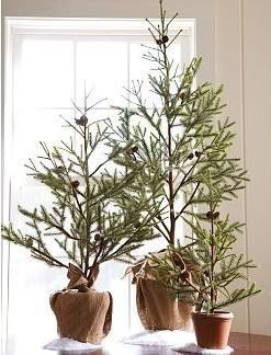 Favorite Winter Tree Display Design Ideas For Small Spaces39