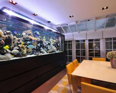 Glamorous Aquariums Design Ideas For Cool Interior Styles To Have04