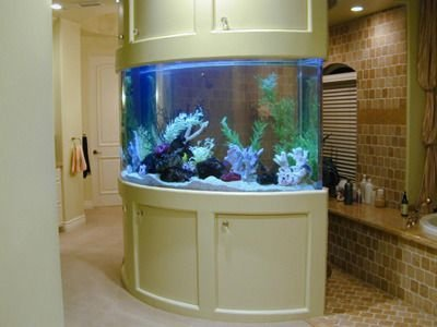 Glamorous Aquariums Design Ideas For Cool Interior Styles To Have06