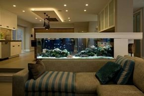 Glamorous Aquariums Design Ideas For Cool Interior Styles To Have13