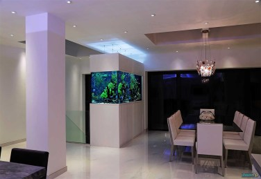 Glamorous Aquariums Design Ideas For Cool Interior Styles To Have20