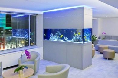 Glamorous Aquariums Design Ideas For Cool Interior Styles To Have22