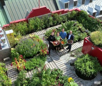 Adorable Rooftop Gardens Design Ideas That Looks Awesome05