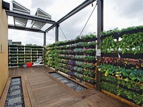 Adorable Rooftop Gardens Design Ideas That Looks Awesome21