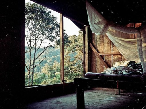 Fantastic Bedrooms Design Ideas With A View Of Nature06