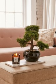 Fascinating Bonsai Tree Design Ideas For Your Room11