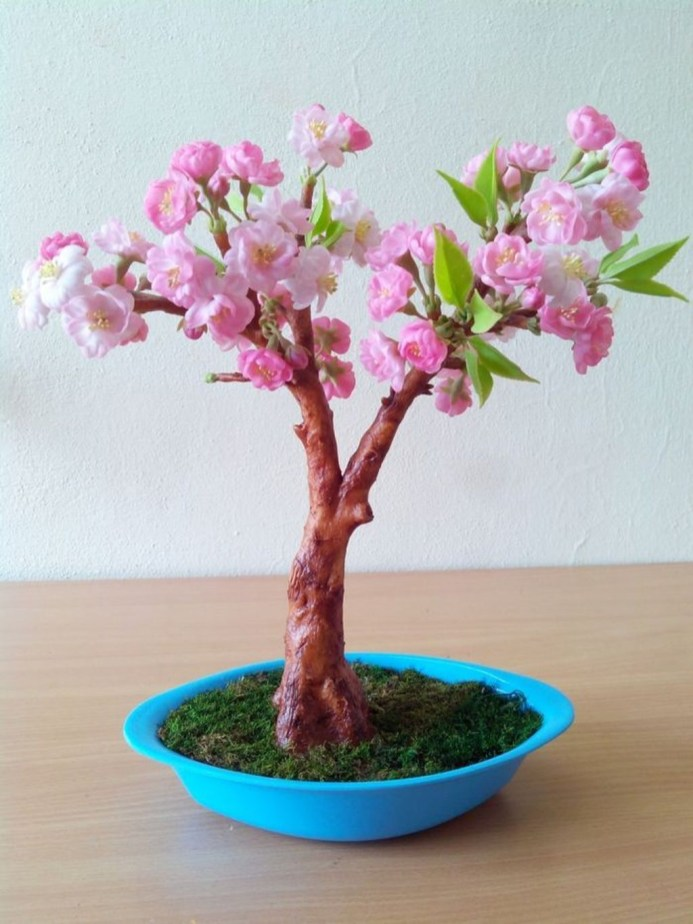 Fascinating Bonsai Tree Design Ideas For Your Room34