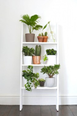 Newest Flower Shelf Design Ideas That Will Amaze You30