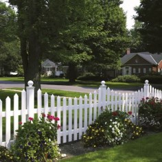 Enchanting Living Fences Design Ideas That Suitable For Your Yard 05