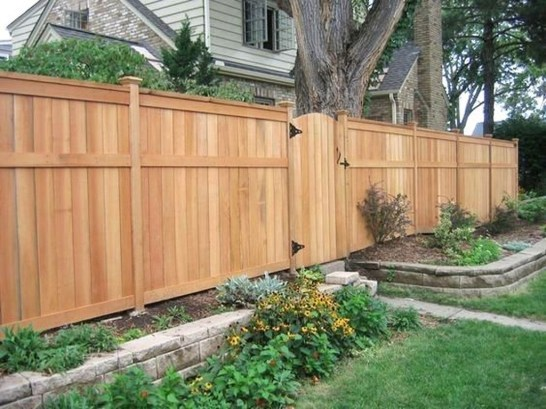 Enchanting Living Fences Design Ideas That Suitable For Your Yard 16