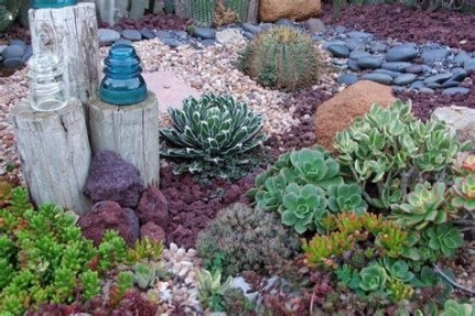 Beautiful Front Yard Cactus Garden Ideas 21