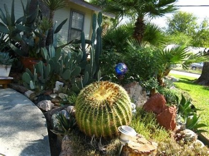 Beautiful Front Yard Cactus Garden Ideas 22