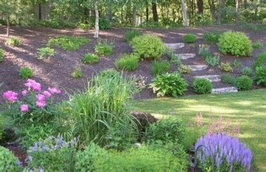 Totally Cute Sloped Backyard Landscaping Ideas 05