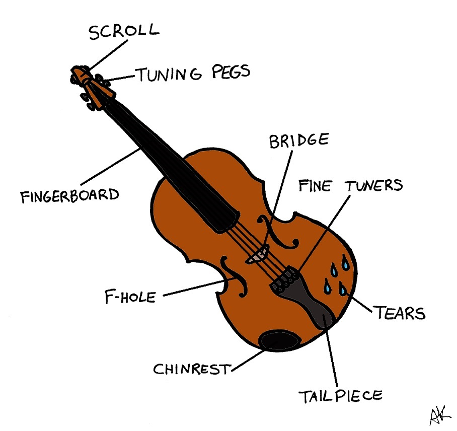 Violin Bow Parts Diagram Images Pictures Becuo