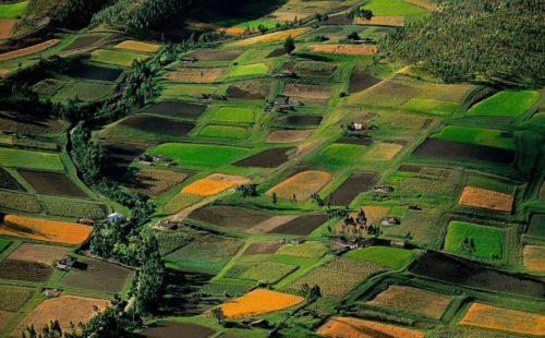 ws_farm_land_fields_landscape_2560x1920_47784100