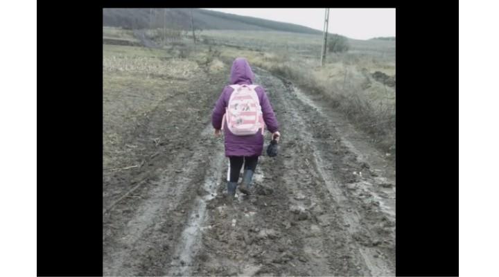 """Video Cluj. Fetița se încăpățânează să meargă la școală prin noroaie. """"De-abia ne tragem piciorele după noi de noroi"""". Dacă aveți copii mofturoși cu școala arătați acest video cu o fetiță care se încăpățânează să meargă zilnic la școală prin noroaie, unde doar tractoarele pot trece 1"""