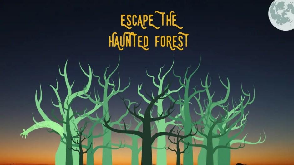 Eveniment inedit în pădurea Hoia - Baciu la miezul nopţii: Escape The Haunted Forest