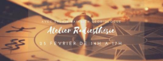 atelier 25 fevrier radiesthesie 2017