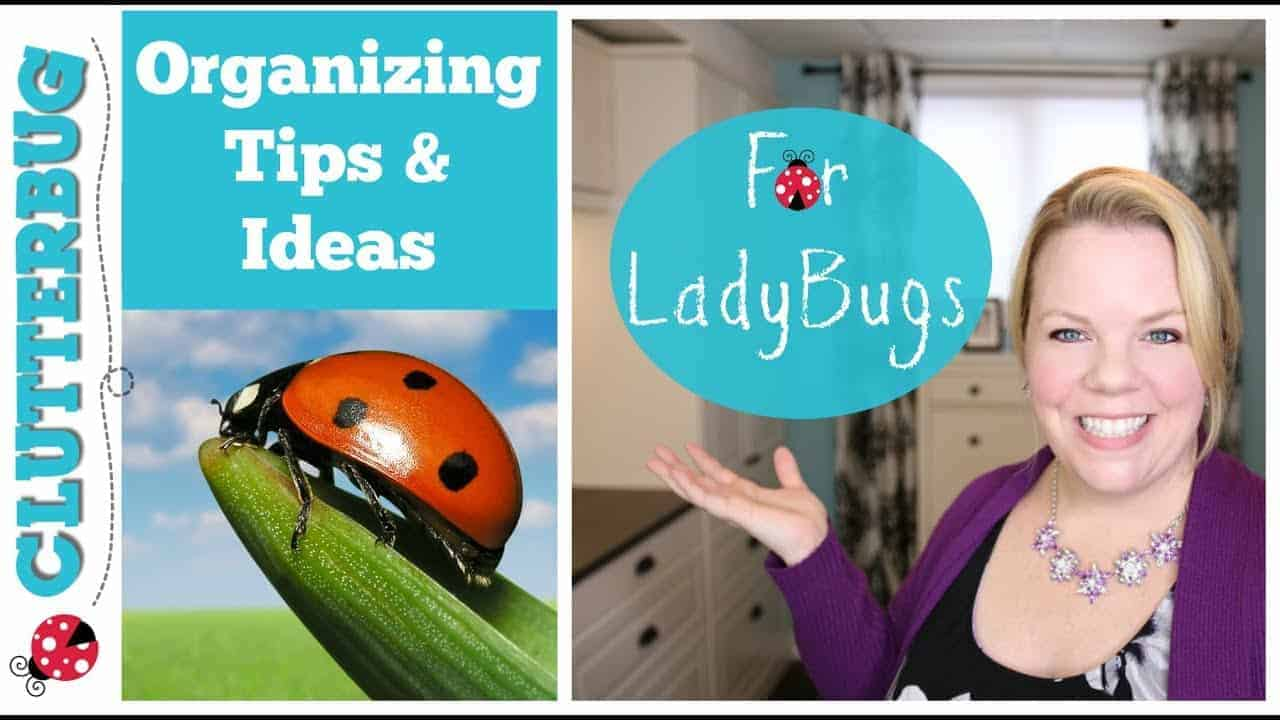 Organizing Tips And Ideas For Ladybugs Clutterbug