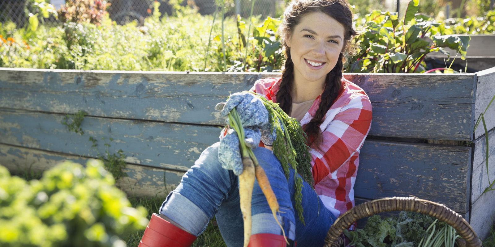 Kitchen Garden Plans Vegetable Garden Ideas