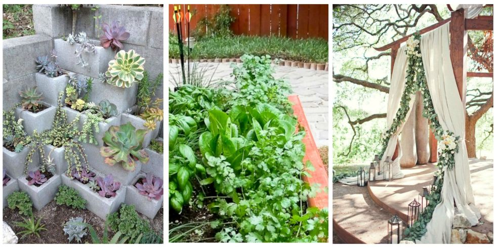 Gardening Trends — Ways To Improve Your Garden